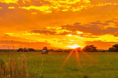 Magically Illuminated, the Sun also rises